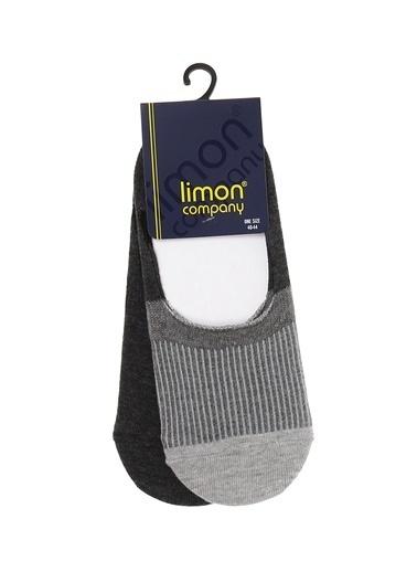 Limon Company Çorap Bordo